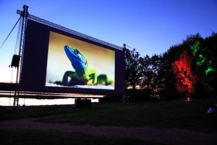 Rold Skov Natur film festival ved St. Økssø. Digital afvikling, lys og dekolys.